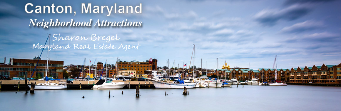 canton baltimore city md attractions and amenities for home buyers